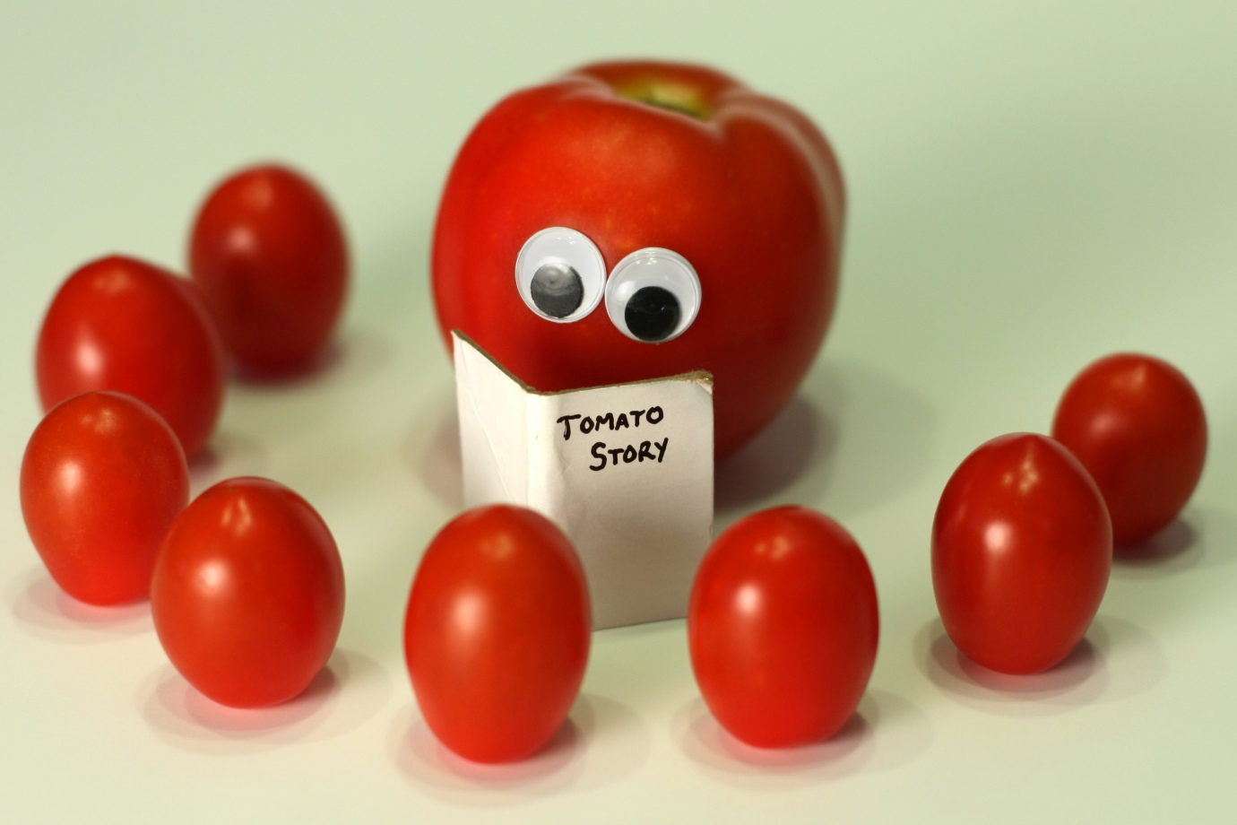 Tomato Story by jeffsmallwood, on Flickr http://www.flickr.com/photos/jeffsmallwood/4740428924/ Shared under a CC-BY-NC-2.0 license