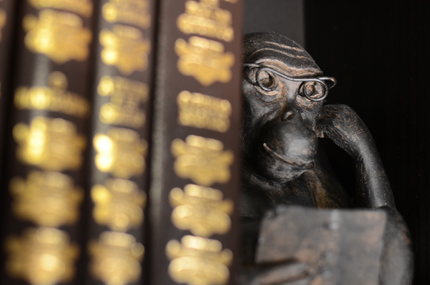 Day #032 - Monkey Reader by Daniel Antunes CC-BY-NC-ND via flickr https://www.flickr.com/photos/danielantunes/8435705107/